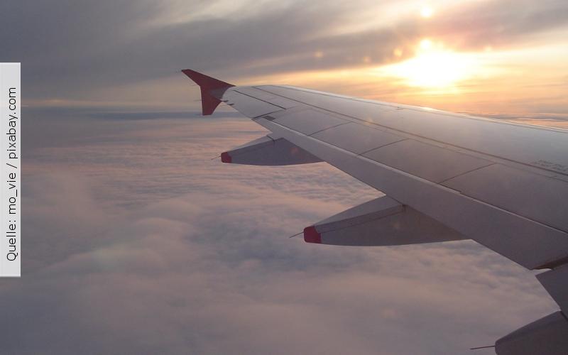 Studium_in_Deutschland_Flugzeugflügel