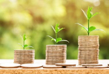 Gehaltserhöhung_Drei Pflanzen und Münzstapel